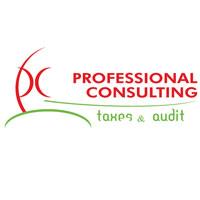 Professional Consulting: Consultanţă fiscală, audit financiar, accesare fonduri europene şi evidenţă contabilă